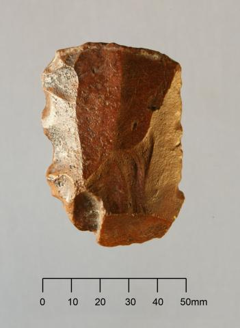 Late pleistocene artefact