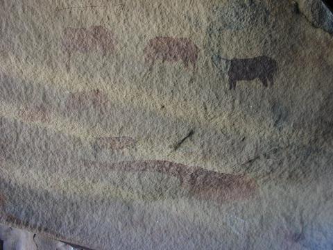 Monochrome eland torsos